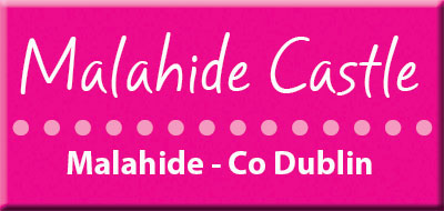 Bike rentals and Womens cycle to health and fitness course Malahide Co Dublin